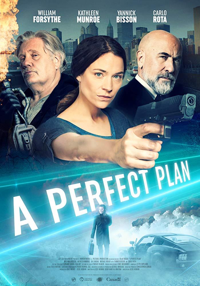a perfectplan poster (1)
